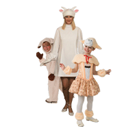 Козы и овечки