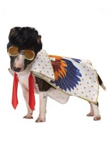 Костюм для собаки Король рок-н-ролла