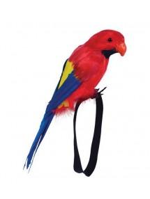Попугай перьевой малый