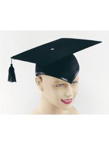Шляпа магистра университета
