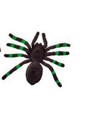 Бархатный тарантул черно-зеленый