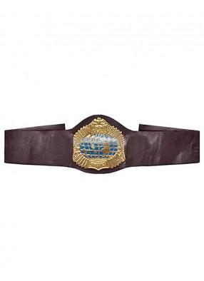 Чемпионский пояс боксера
