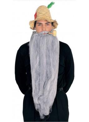 Длинная серая борода с усами