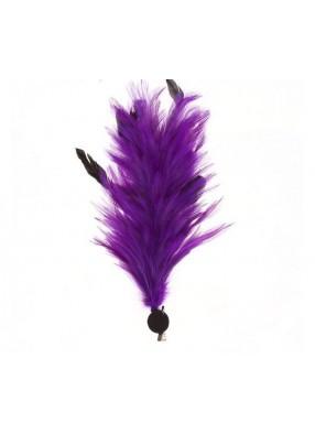 Фиолетовое перо для дам