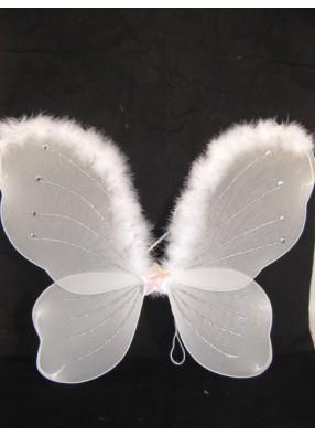 Крылья бабочки белые с верхней опушкой