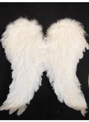 Крылья перьевые белые 20-50
