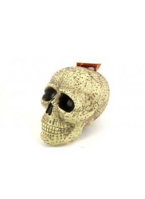 Муляж большого черепа