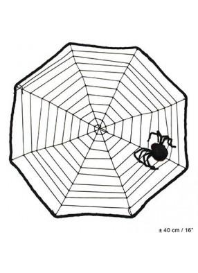 Натянутая паутина с пауком