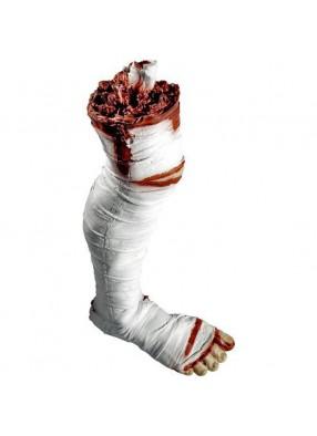 Оторванная нога мумии