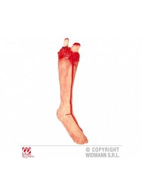 Отрезанная нога
