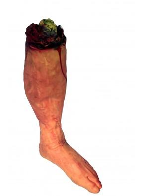 Пара оторванных ног фото