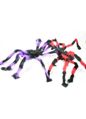 Паук красно-черный