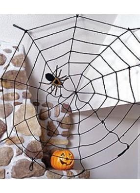 Паутина с пауком