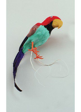 Попугай перьевой
