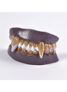Желтые зубы оборотня