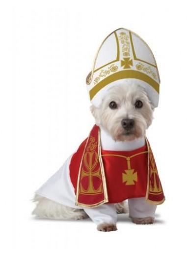 Костюм Папы Римского для собаки